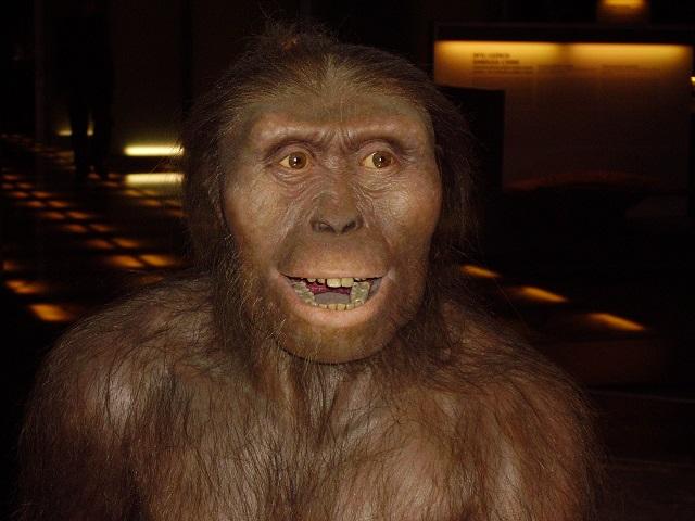 evolucion-especie-hombre