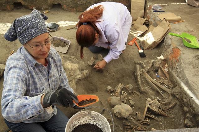 arqueologo-estudiar