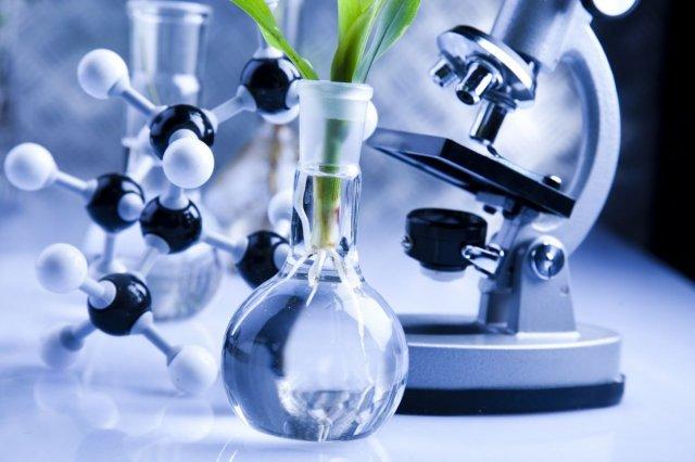 biotecnologia-estudiar-online