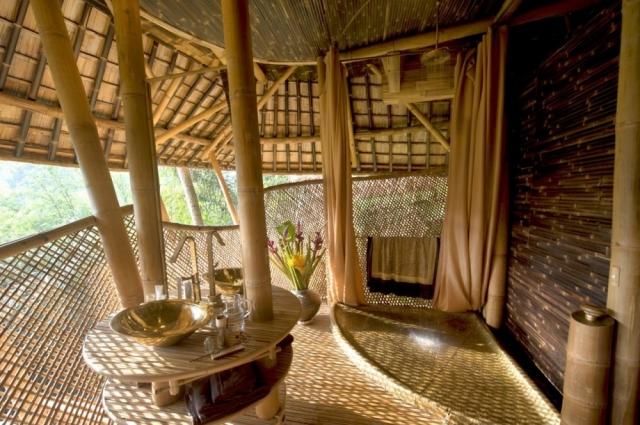 El bamb la planta de los mil usos curiosidades - Cultivo del bambu ...