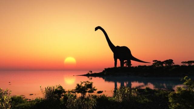 5. Los dinosaurios se extinguieron por el impacto de un asteroide