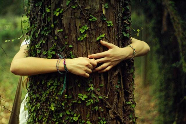 abrazar-arboles-naturaleza-salud
