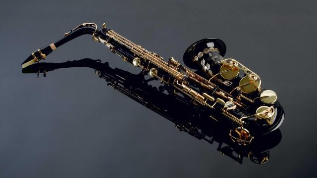 instrumentos musicales elegir adulto