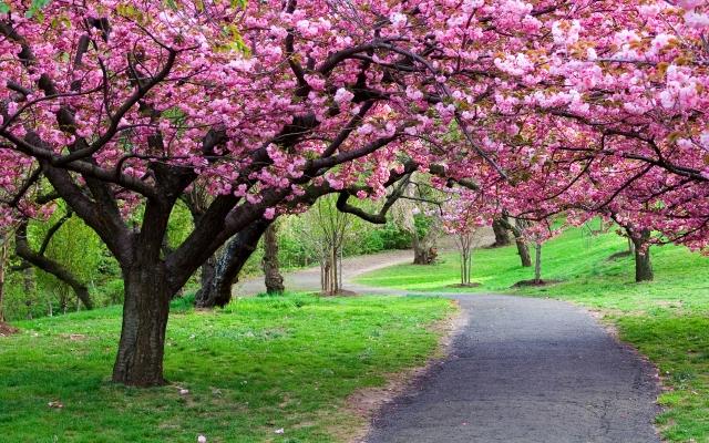 prepararse para la primavera