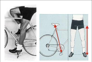 Altura del Asiento del Asiento de la Bicicleta