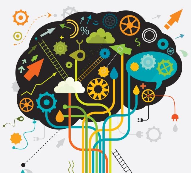 cerebro limbico que es para que sirve como funciona cerebro sistema cerebral