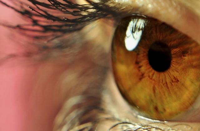 Datos curiosos que Nuestros Ojos revelan acerca de nuestra biología