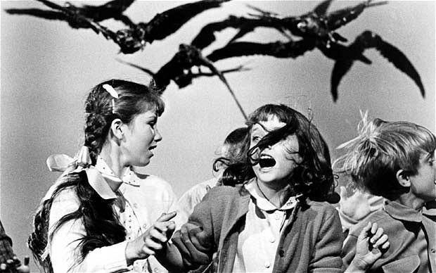 los pajaros hitchcock cine pelicula terror