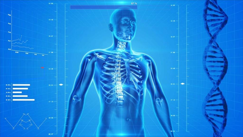 Demuestra lo aprendido con Anatomy Learning