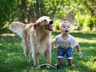 6 cosas que te pasaron cuando fuiste niño